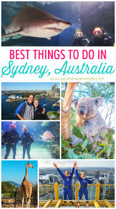 best things to do in best things to do in sydney australia kevin u0026 amanda food
