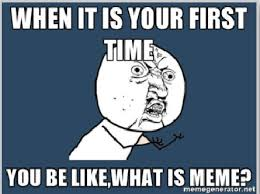 What Are Memes - what are memes and how memes are running the social media our