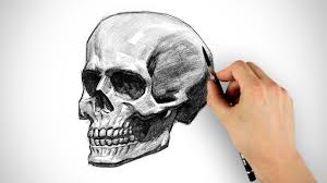 draw a skull halloween special youtube