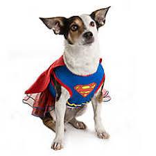 pet costumes dog costumes shop small large dog costumes petsmart