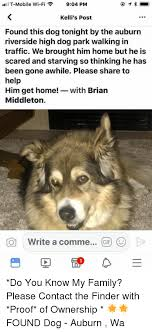 T Mobile Meme - 1 t mobile wi fi 904 pm kelli s post found this dog tonight by the