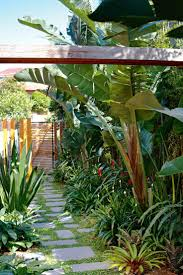 Tropical Gardening Ideas Inside Out Of The Best Side Garden Designs By Matthew Cantwell