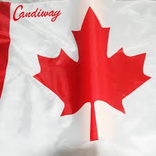 online shop candiway dominion of canada banner canadian flag