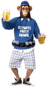 halloween animal costumes for adults 10 best ide tentang party animal costume di pinterest kostum