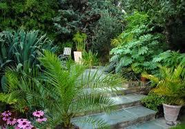 Patio Plants For Sun Exotic Patio