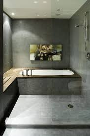 Bathtubs On Houzz Tips From The Experts Best 25 Bath Shower Ideas On Pinterest Shower Bath Combo