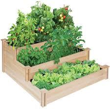 Vegetable Pot Gardening For Beginners Home Gardening For Beginners
