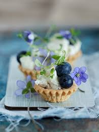 berry canapes 54 best dessert canapes images on finger foods kitchens