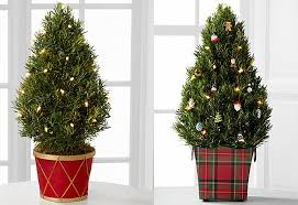 miniature christmas trees 10 green christmas tree alternatives to make your shine