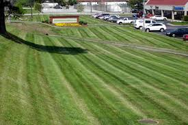 commercial turf and ornamental fertilization fresno clovis ca