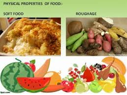role of diet and nutrition in dental caries