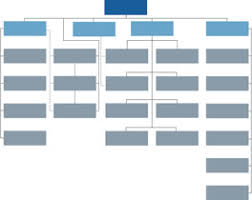 10 best images of free fillable organizational chart template