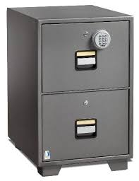 Fire Resistant Filing Cabinets by Fire Resistant Filing Cabinet 2 File Drawers Silver Grey