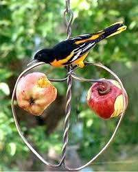 bird feeder unique style garden bird house nesting feed