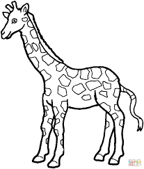 giraffe 7 coloring page free printable coloring pages
