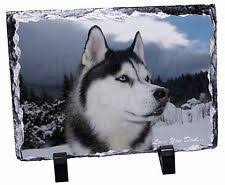 ornaments figurines siberian husky collectables ebay