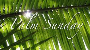 palms for palm sunday palm sunday celebrate all day st episcopal church