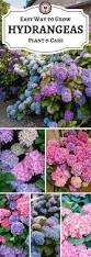 the 25 best garden ideas ideas on pinterest gardens backyard
