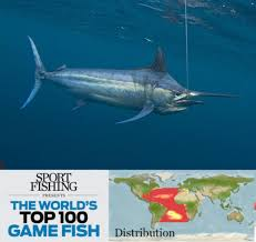 the world u0027s top 100 saltwater game fish