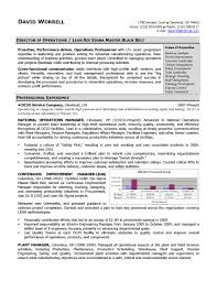 marketing manager account resume sample pdf saneme