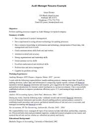 Internal Resume Examples by Sample Internal Auditor Resume Youtuf Com