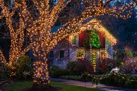 Fairy Lights In Trees by Photo Vancouver Canada Christmas Butchart Gardens Christmas Night