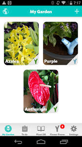 new app parrot flower power beta will keep your plants happy and