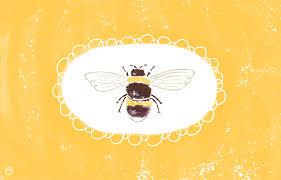 free pumpkin desktop wallpaper free digital wallpapers from the hallmark summer interns think