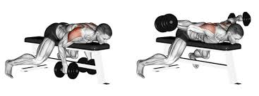 Flat Bench Dumbell Develop More