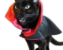 Halloween Costume Cats Cat Costumes Pet U2013 Festival Collections