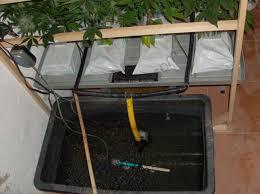 chambre de culture hydroponique comment monter un système de culture de cannabis hydroponique