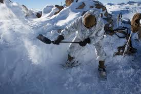 warlords fight in winter environment 2nd marine regiment 2nd