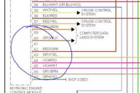 vw polo 9n radio wiring diagram wiring diagram
