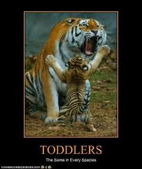 Tiger Mom Memes - 73 best toddler memes images on pinterest funny stuff ha ha and