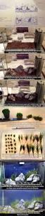 Best Substrate For Aquascaping Best 25 Betta Tank Ideas On Pinterest Betta Aquarium Betta