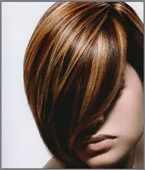 hair color high light highlight hair color for black hair popular long hairstyle idea