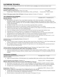 Art Director Resume Sample by Communications Director Cover Letter
