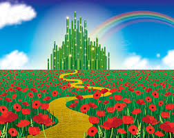 Wizard Of Oz Shower Curtain Wizard Of Oz Etsy