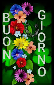 1859 best buongiorno images on pinterest for her good morning