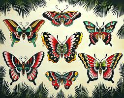 neo traditional moth keywords and pictures