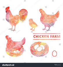 chicken farm set watercolor rooster hen stock vector 540965356