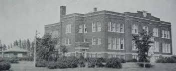 woodford county high school yearbook washburn township high school 1928 1929 woodford county illinois