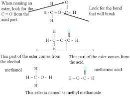 nomenclature of esters chemistry libretexts