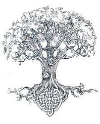 the tree of crann bethadh the portfolio of menhennet