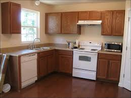 Oak Cabinet Kitchen Makeover - kitchen grey painted kitchen cabinets can you paint laminate