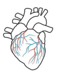 25 unique heart outline ideas on pinterest valentines crafts