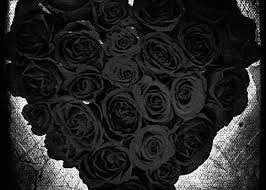 black roses for sale black roses greeting card for sale by absinthe