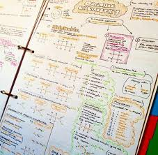 103 best cornell notes images on pinterest study
