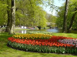 keukenhof flower gardens keukenhof holland u2013 it u0027s tulip time richard tulloch u0027s life on