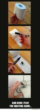 Best 25 Spider Meme Ideas - best 25 funny spider memes ideas on pinterest spider meme